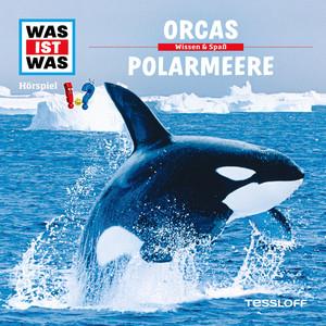 50: Orcas / Polarmeere Hörbuch kostenlos