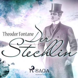 Der Stechlin (Ungekürzt) Audiobook