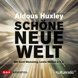 Schöne neue Welt (Hörspiel) Audiobook