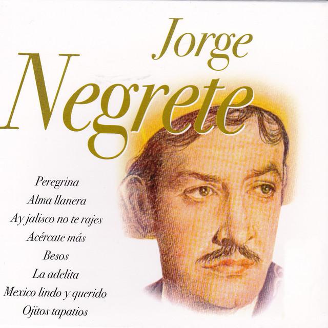Estrategias Para El Aprendizaje Jorge Alberto Negrete Pdf To Jpg