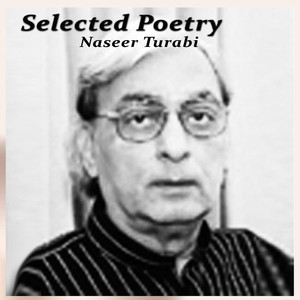 Selected Poetry Audiobook