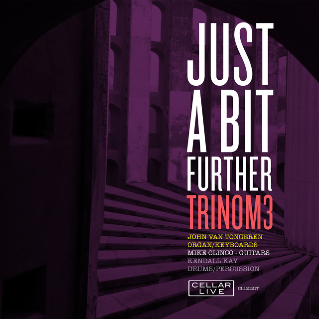 Album cover for Just A Bit Further by Trinom3