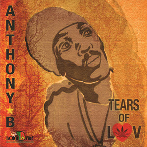 Tears of Luv album