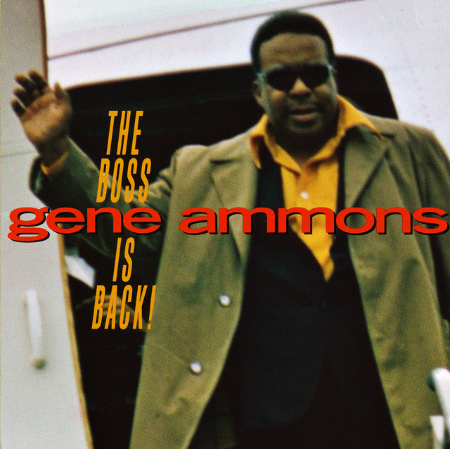 Artwork for Didn't We by Gene Ammons