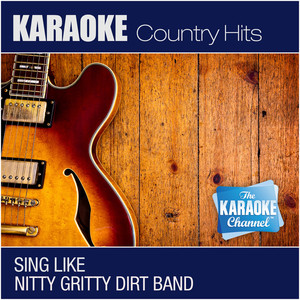 The Nitty Gritty Dirt Band album