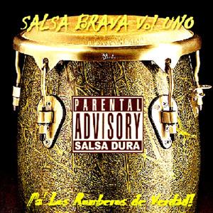 Salsa Brava, Vol. 1 album