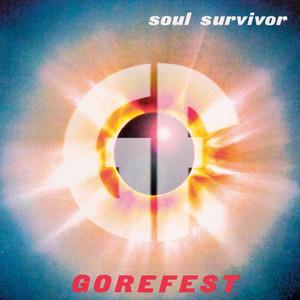 Soul Survivor/Chapter 13 album