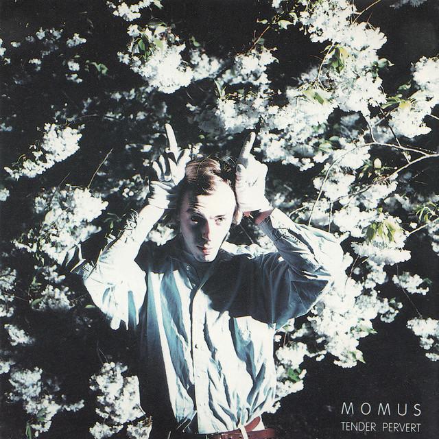 Momus - Tender Pervert