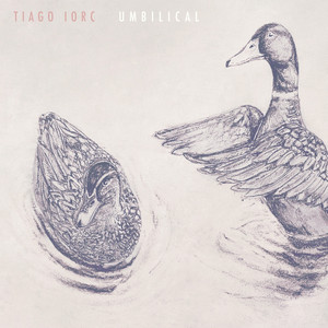 Umbilical Albumcover