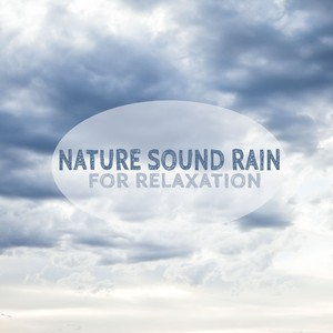 Nature Sound Rain For Relaxation Albumcover