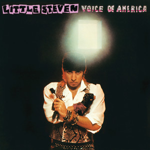 Voice Of America - Little Steven