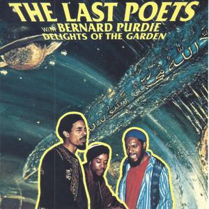 Delights of the Garden (feat. Bernard Purdie) album