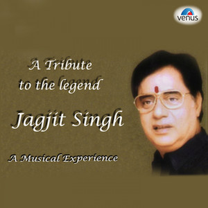 A Tribute to the Jagjit Singh Albümü