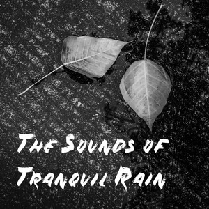 The Sounds of Tranquil Rain Albumcover