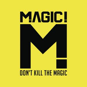 Don't Kill the Magic Albumcover