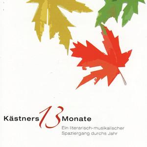 Kästners 13 Monate Audiobook