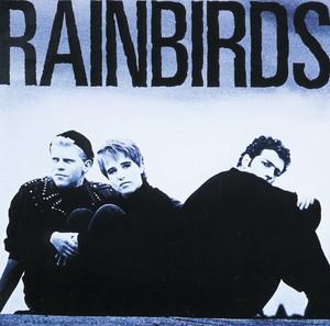 Rainbirds album