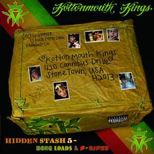 Hidden Stash 5 (Bong Loads & B-sides) Albumcover