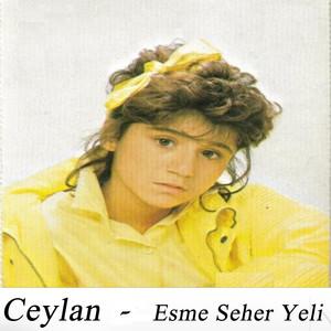 Esme Seher Yeli Albümü