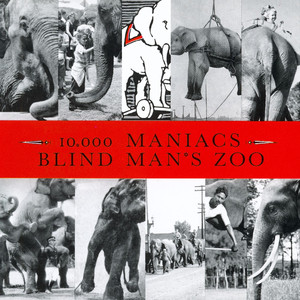 Blind Man's Zoo album