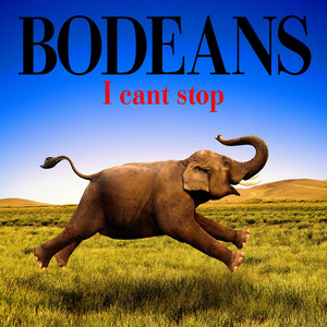 I Can't Stop album