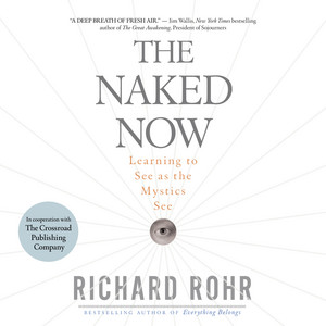 The Naked Now - Learning To See As the Mystics See (Unabridged) Audiobook
