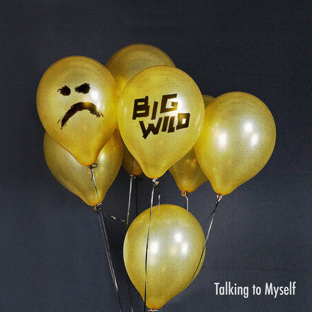 Talking to Myself (Big Wild Remix)