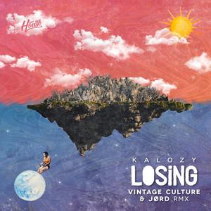 Losing (Remix) Albümü