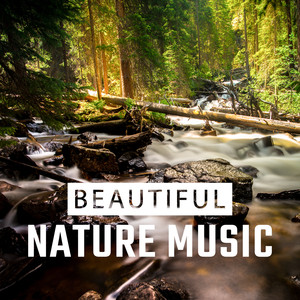 Beautiful Nature Music – Relax with Nature Sounds, Calming New Age Vibes, Stress Relief, Rest a Moment Albümü