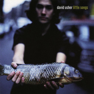 David Usher Forestfire cover