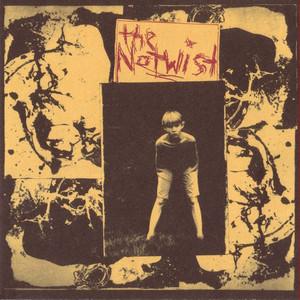 The Notwist album