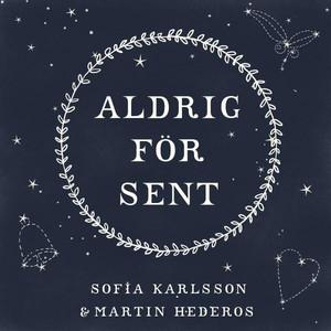 Martin Hederos, Aldrig för sent på Spotify