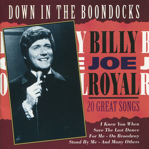 Down in the Boondocks: 20 Great Songs album