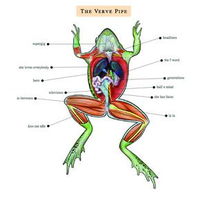 The Verve Pipe album