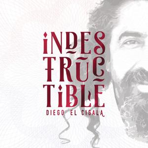 Diego el Cigala Hacha y Machete cover