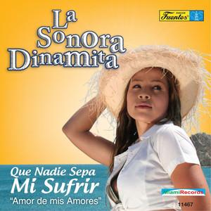 Que Nadie Sepa Mi Sufrir - Amor de Mis Amores Albumcover