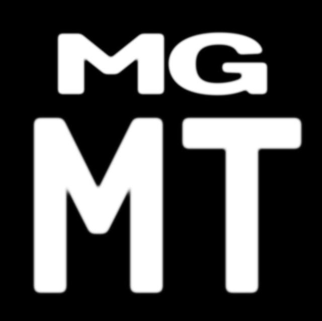 Musik Artist 'MGMT'