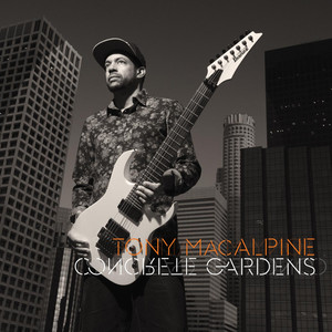 Concrete Gardens album