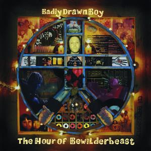 Badly Drawn Boy Disillusion cover
