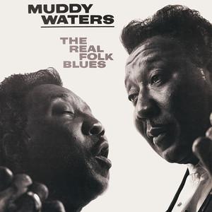 The Real Folk Blues Albumcover