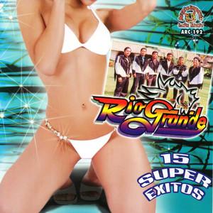 15 Super Exitos album