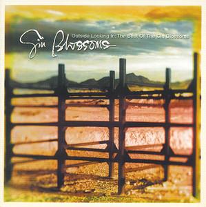 Blossoms album