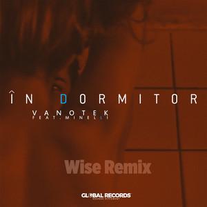 In Dormitor (Wise Remix) Albümü