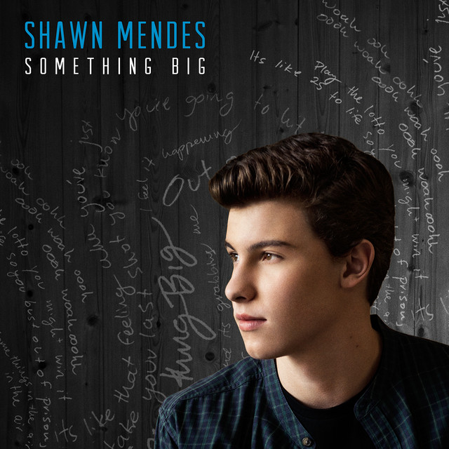 Something Big By Shawn Mendes On Spotify