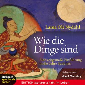 Wie die Dinge sind - Eine zeitgemäße Einführung in die Lehre Buddhas (Gekürzt)