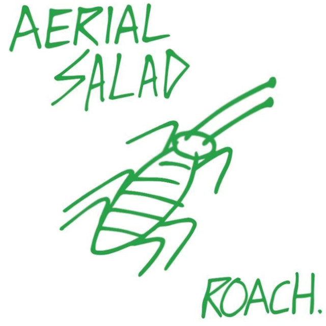 Aerial Salad