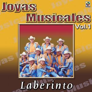 Joyas Musicales Vol. 1 La Piedrecita Albumcover