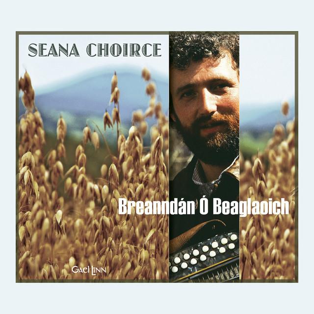 Breanndán Ó Beaglaoich