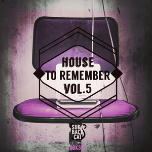 House to Remember, Vol. 5