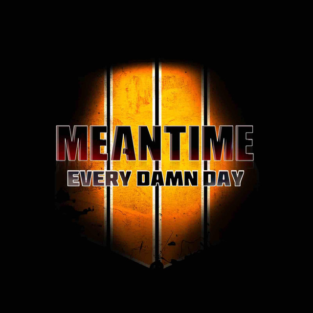 Meantime (Every Damn Day)